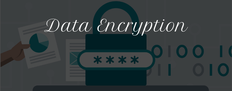 Data Encryption During Transit